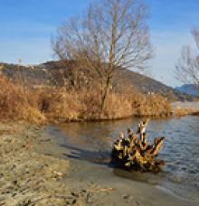 Fondotoce Special Nature Reserve